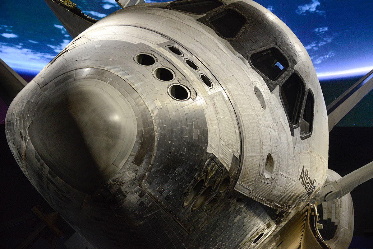 A nose to nose view of Atlantis greet guests at the exhibit.