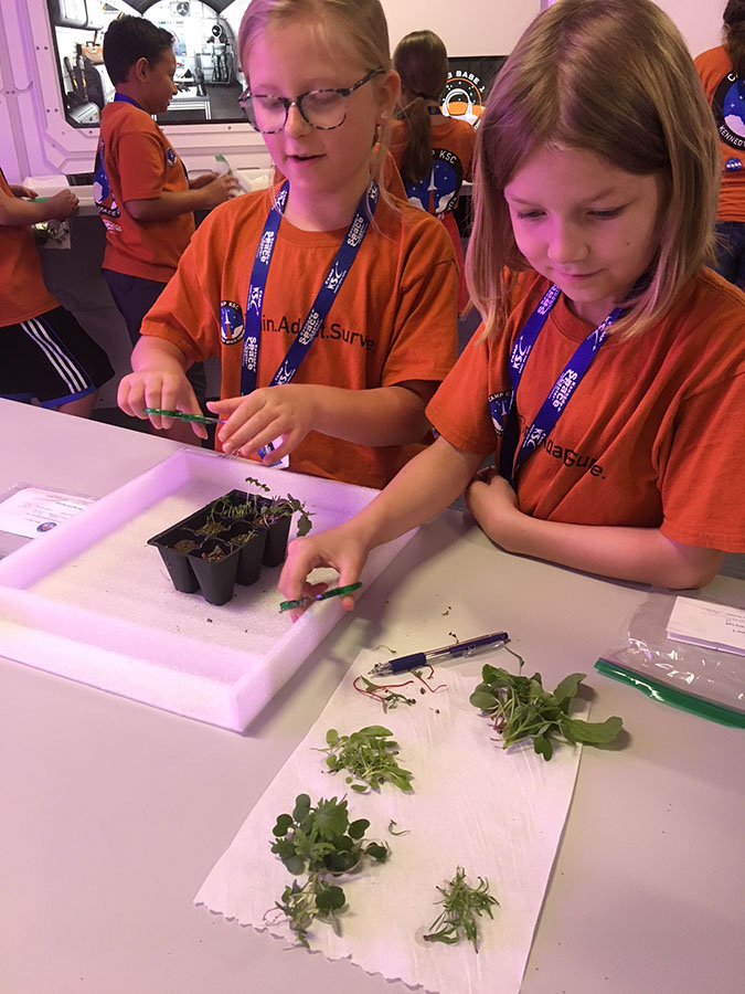 Camp KSC 2018 Team Pathfinder harvests microgreens in the Mars Base 1 botany lab.