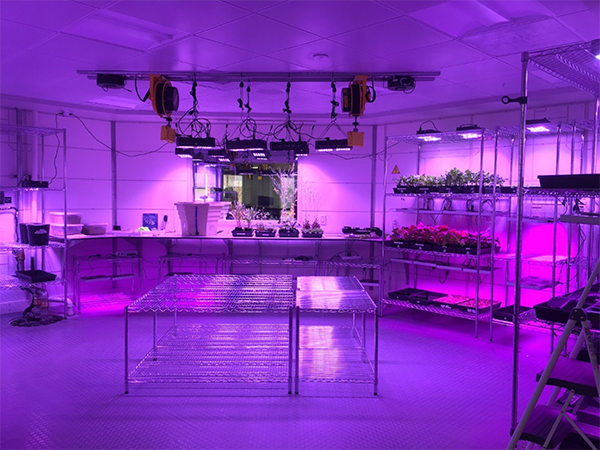 The Mars Base 1 greenhouse, awaiting the FarmBot.