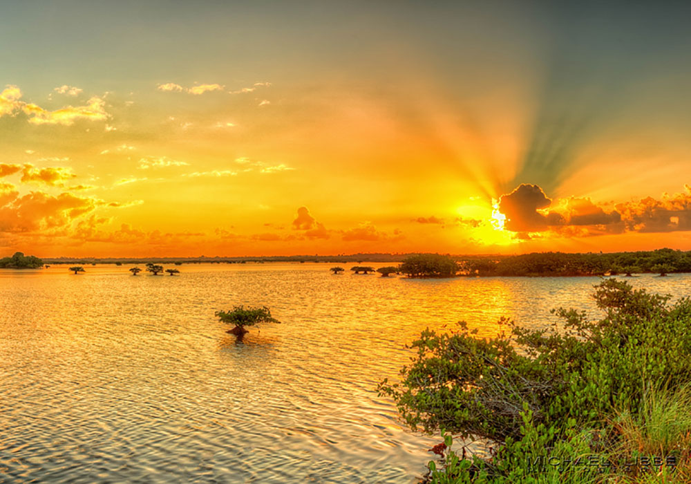 The sun sets golden on Merritt Island National Wildlife Refuge.